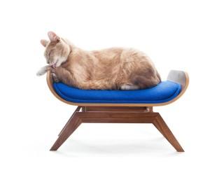 canopystudio-lounge-lick