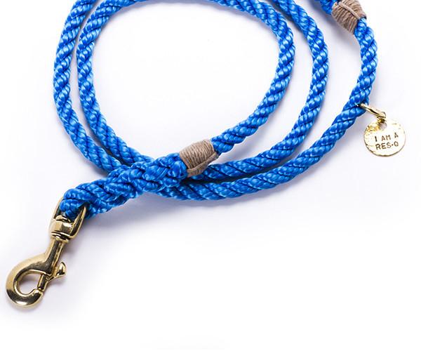 leash_blue_2_600x600_1024x1024